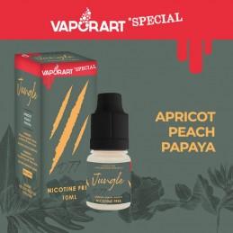 Vaporart Jungle D77 - Liquido pronto 10ml per sigarette elettroniche
